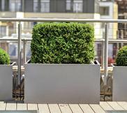 Large Planters 50-80cm