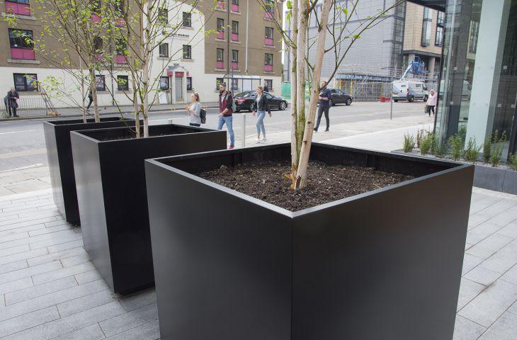 Steel tree planters