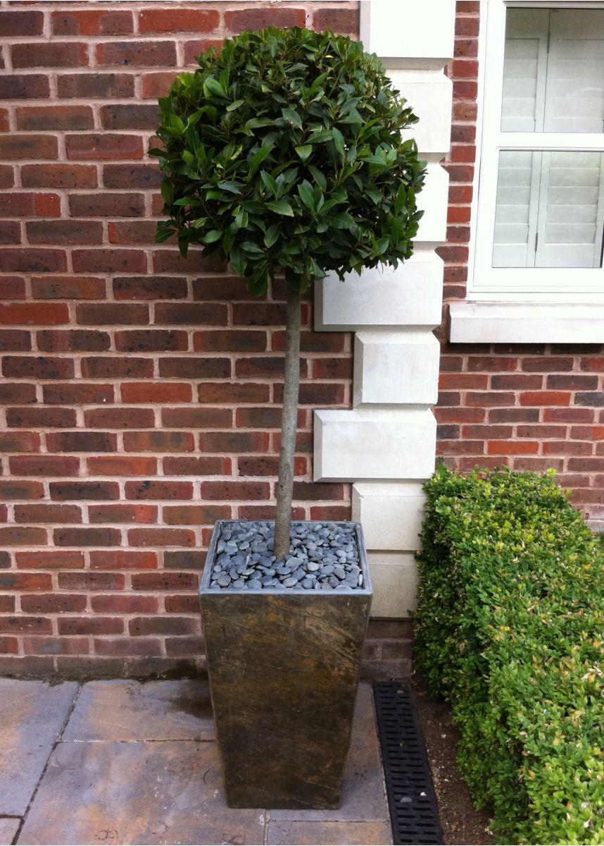 Natural slate garden plant pots