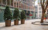 Bespoke planters in bronze