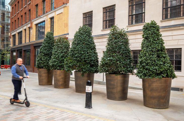 Bronze and brass tree planters