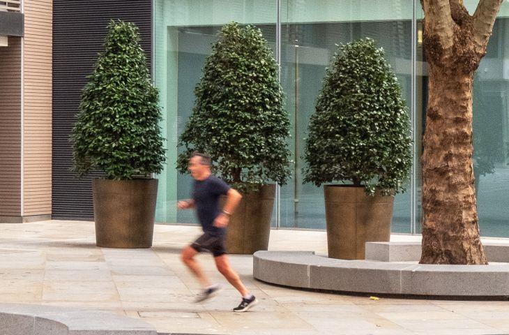 Bronze commercial planters
