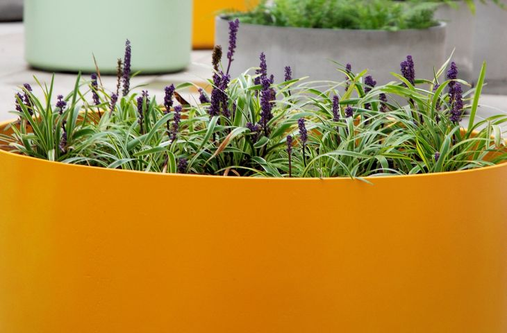 King's College London – custom-coloured Boulevard planters