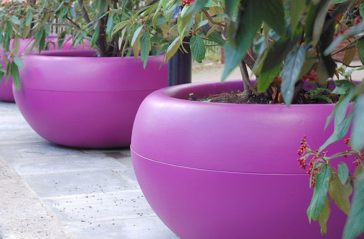 colourful garden pots