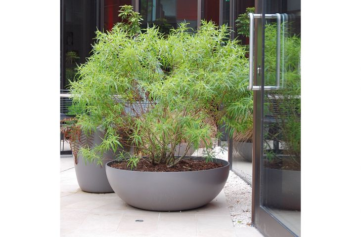 Close-up of LAUSANNE 90cm planter