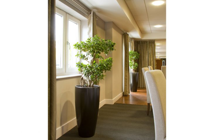 GRP planters at DoubleTree by Hilton, Cadbury House Hotel