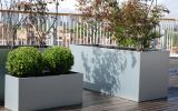 Galvanised steel planters at City of Westminster College