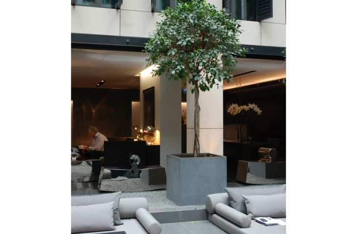 Large 750mm granite cube planters in central courtyard space