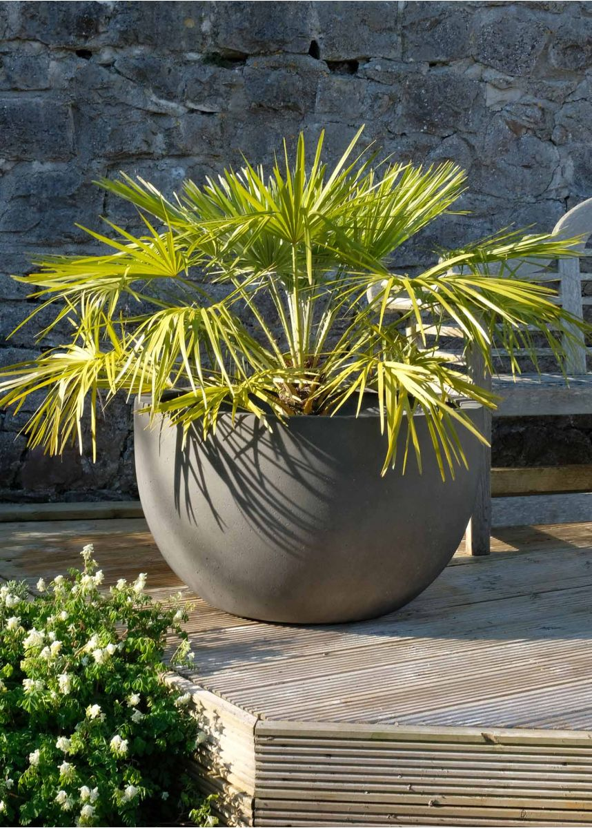 Round bowl planter 80cm diameter