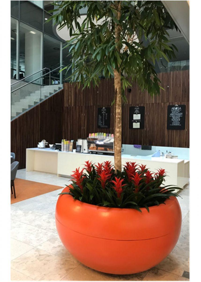 Office tree plant pot