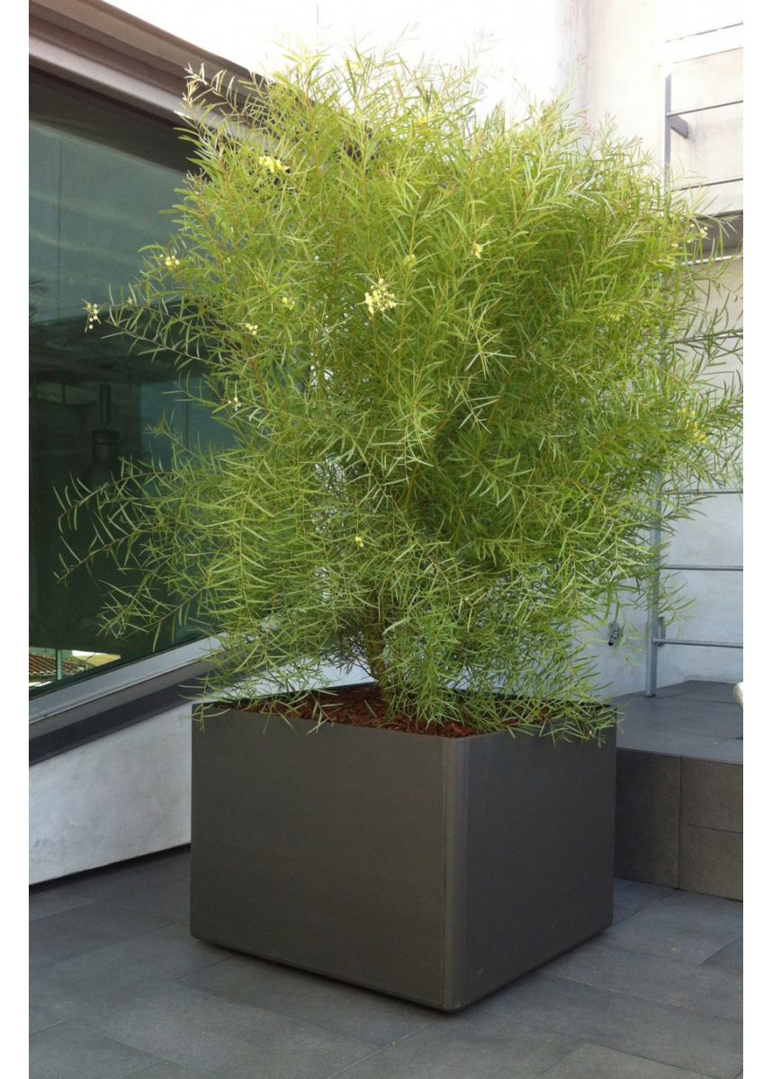 80cm square garden pot