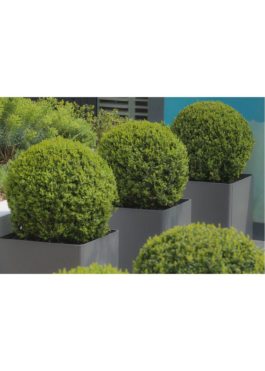 FRC square garden planters