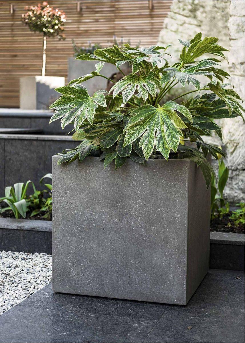 Large Mid Grey Square Plant Pot