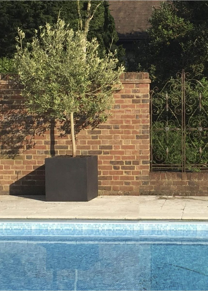 Large square fibreglass planter box