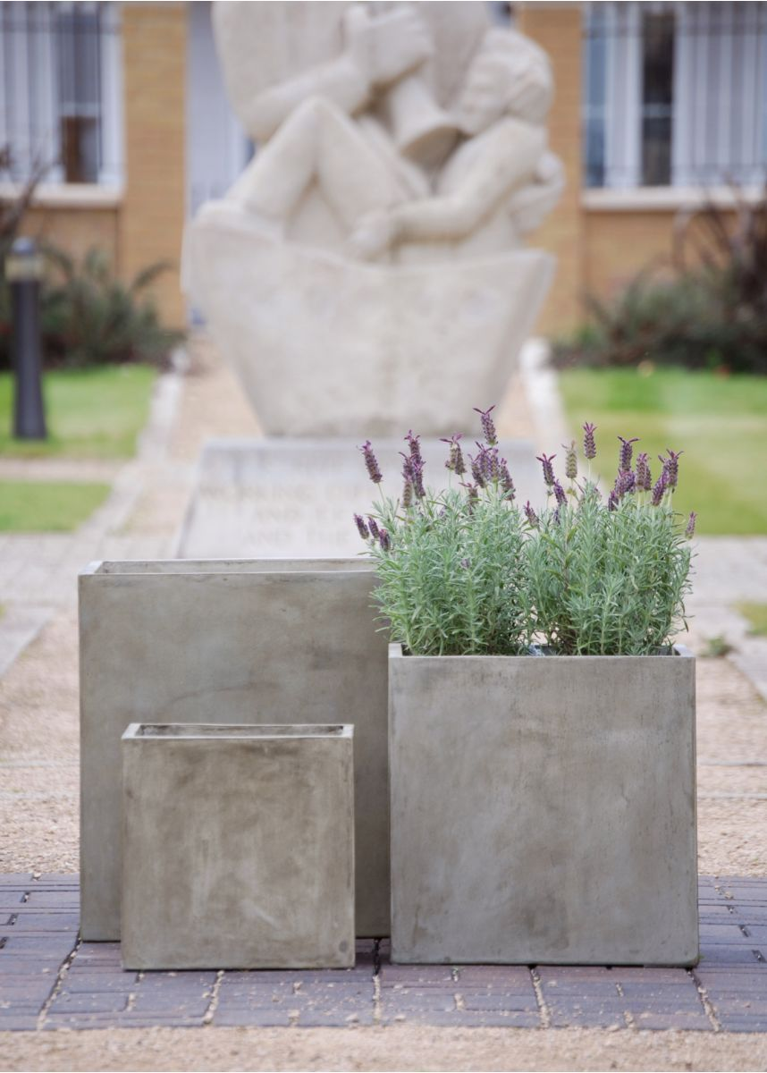 Warm grey polished plaster planters