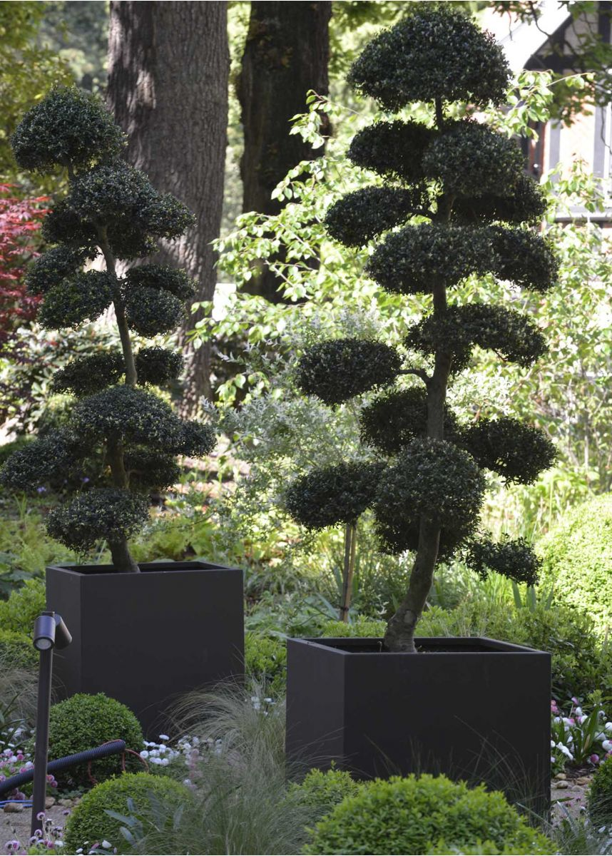 Large Steel Cube Planter with trees