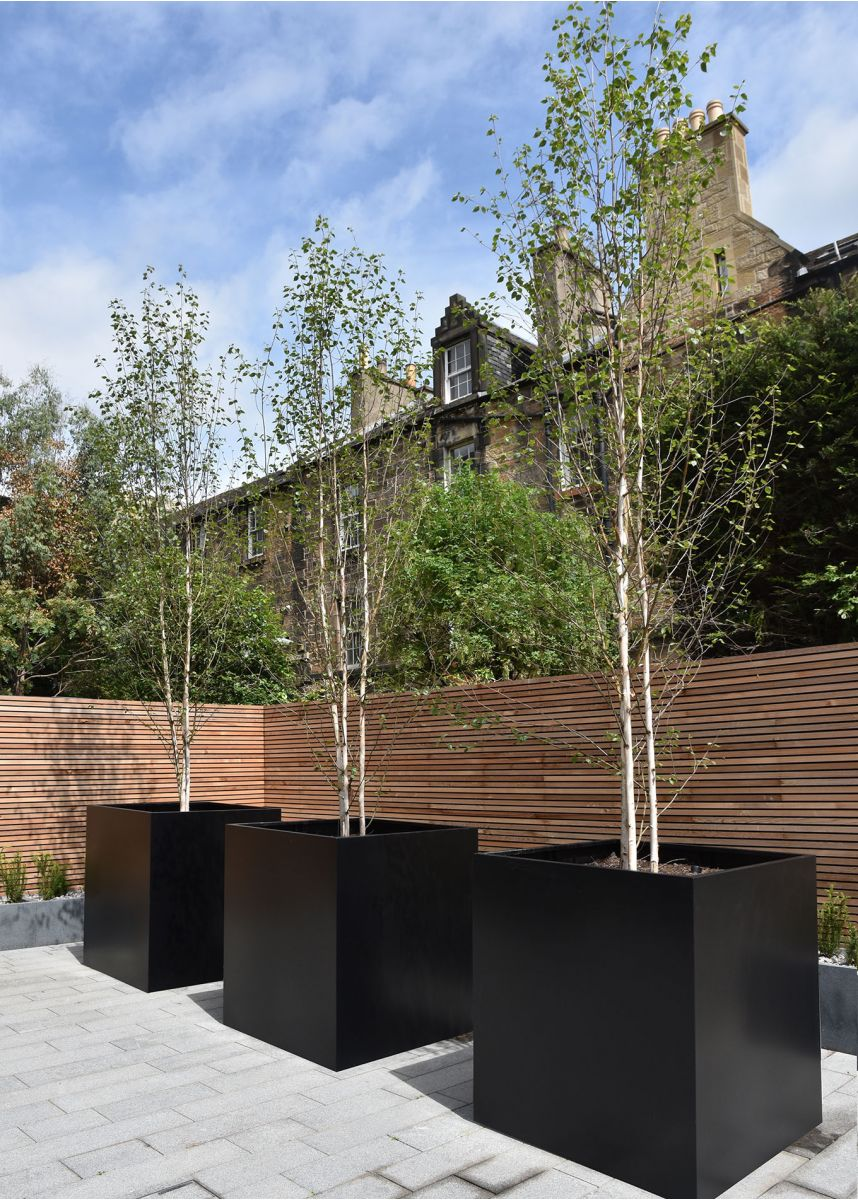Black Powder Coated Steel Tree Planters