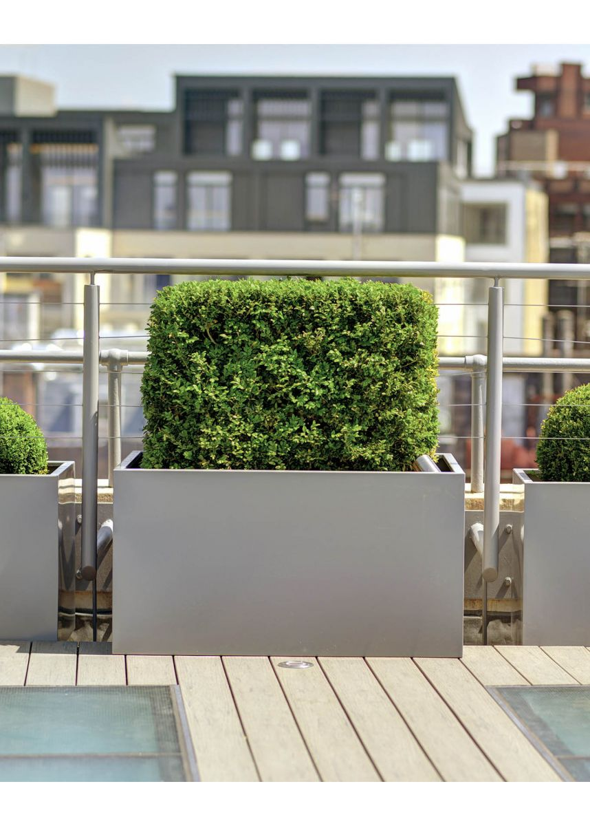 Low square outdoor steel planters