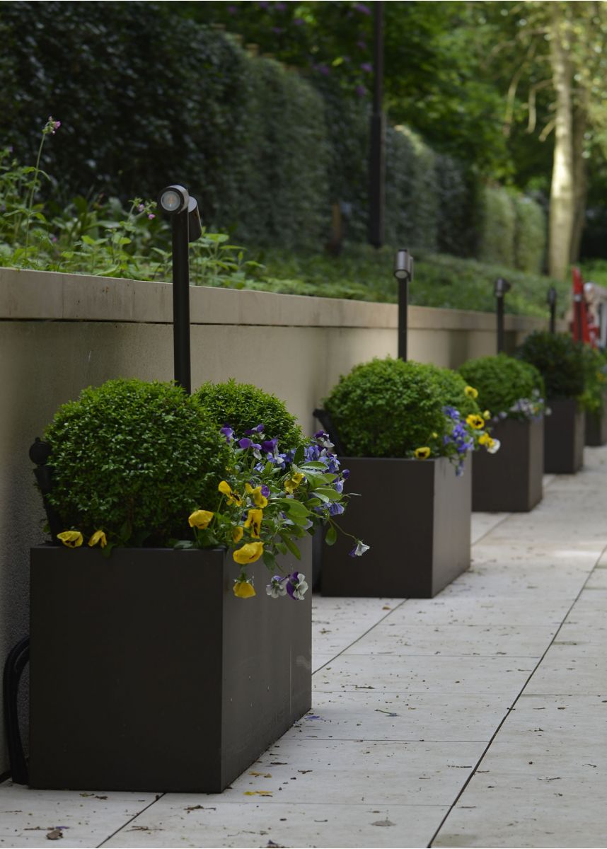 Modern steel trough planters