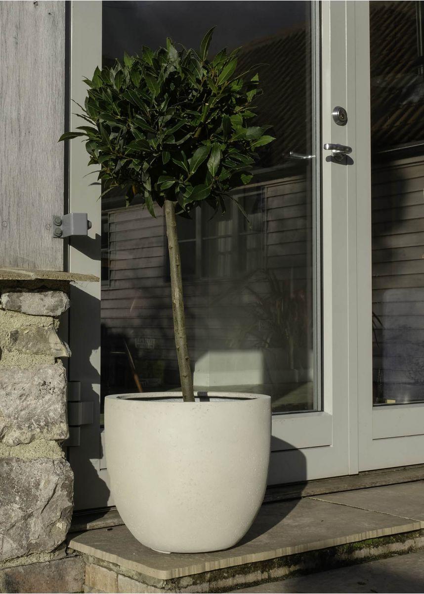 White limestone garden plant pots