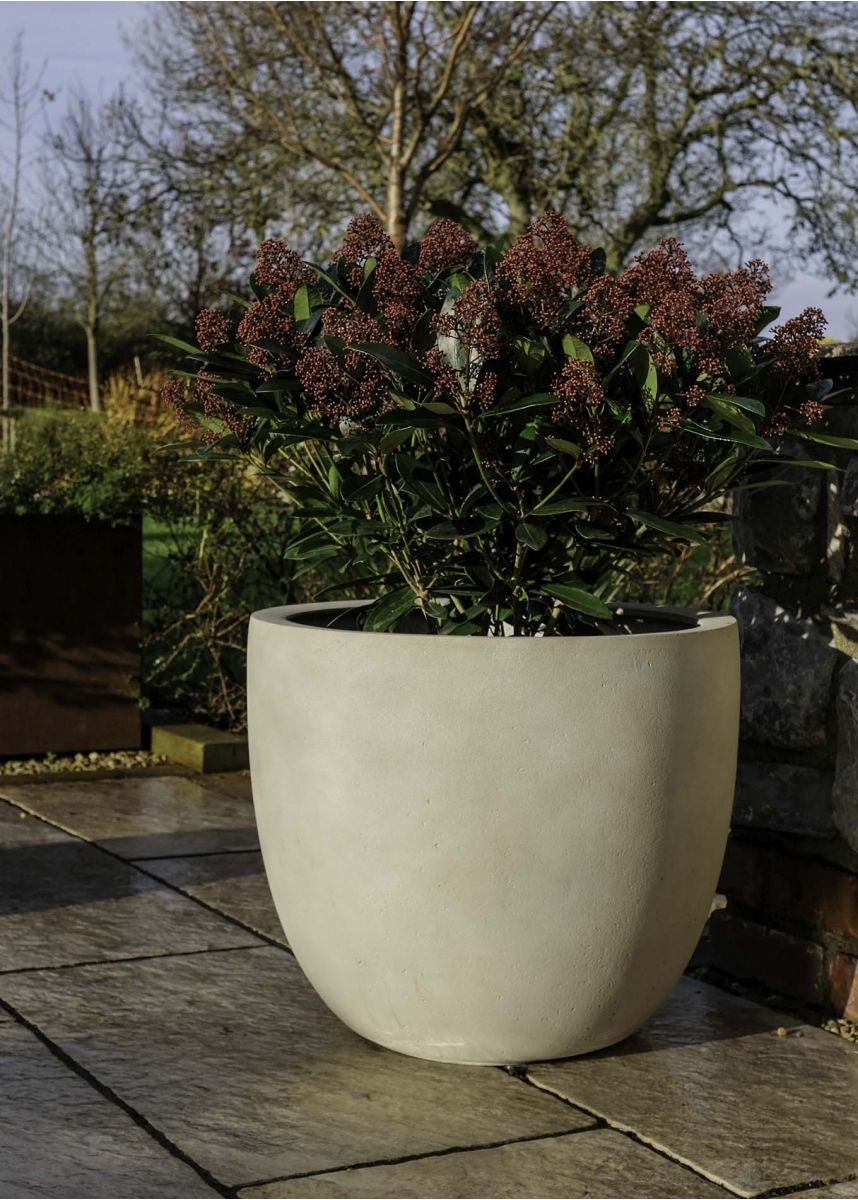 Large antique white planter pot