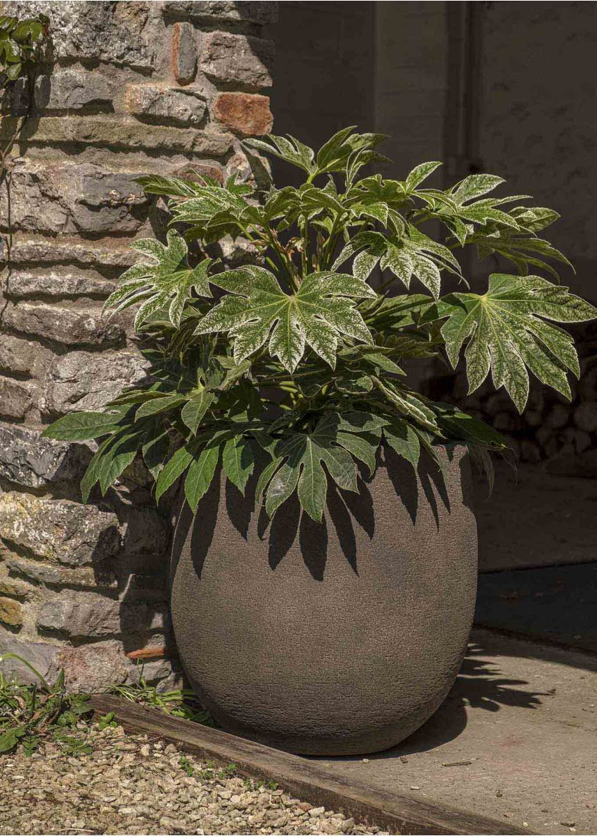 55cm Tall Savanne Planter Pots