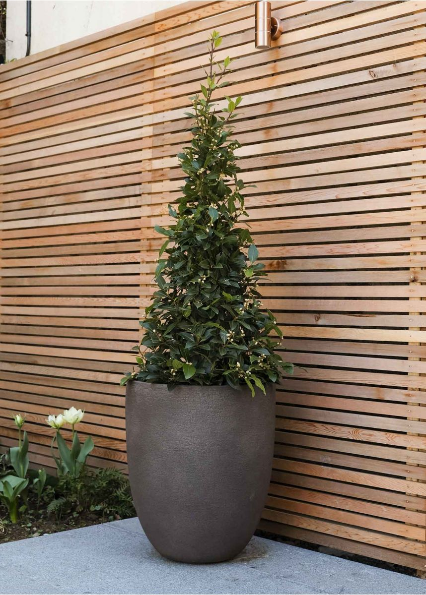 Savanne H61cm Tall Rounded Planter