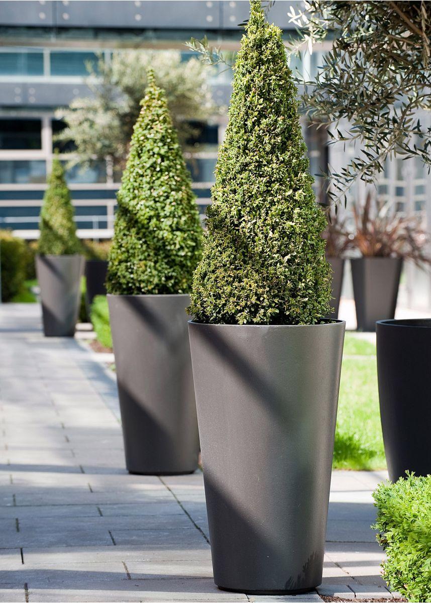 FRC Alto lightweight planters