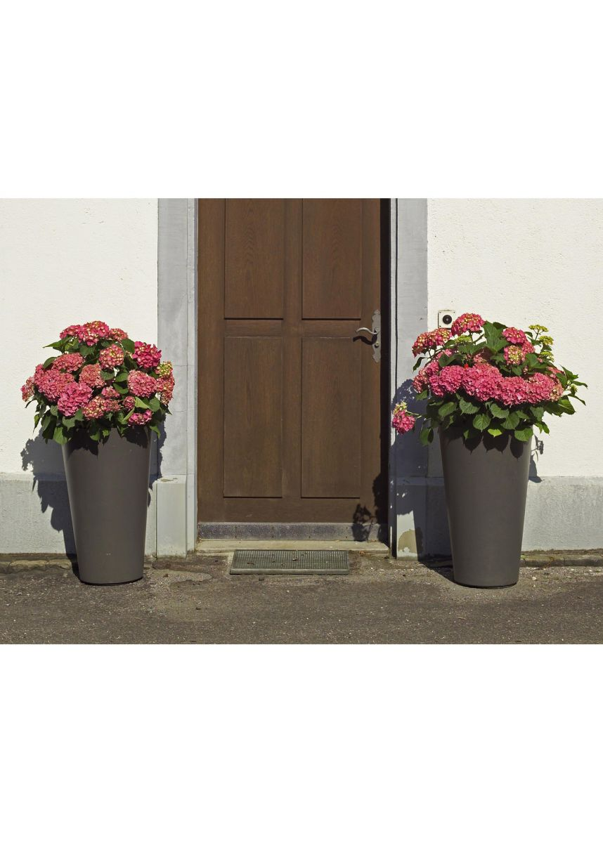 Tall tapered cylinder planters