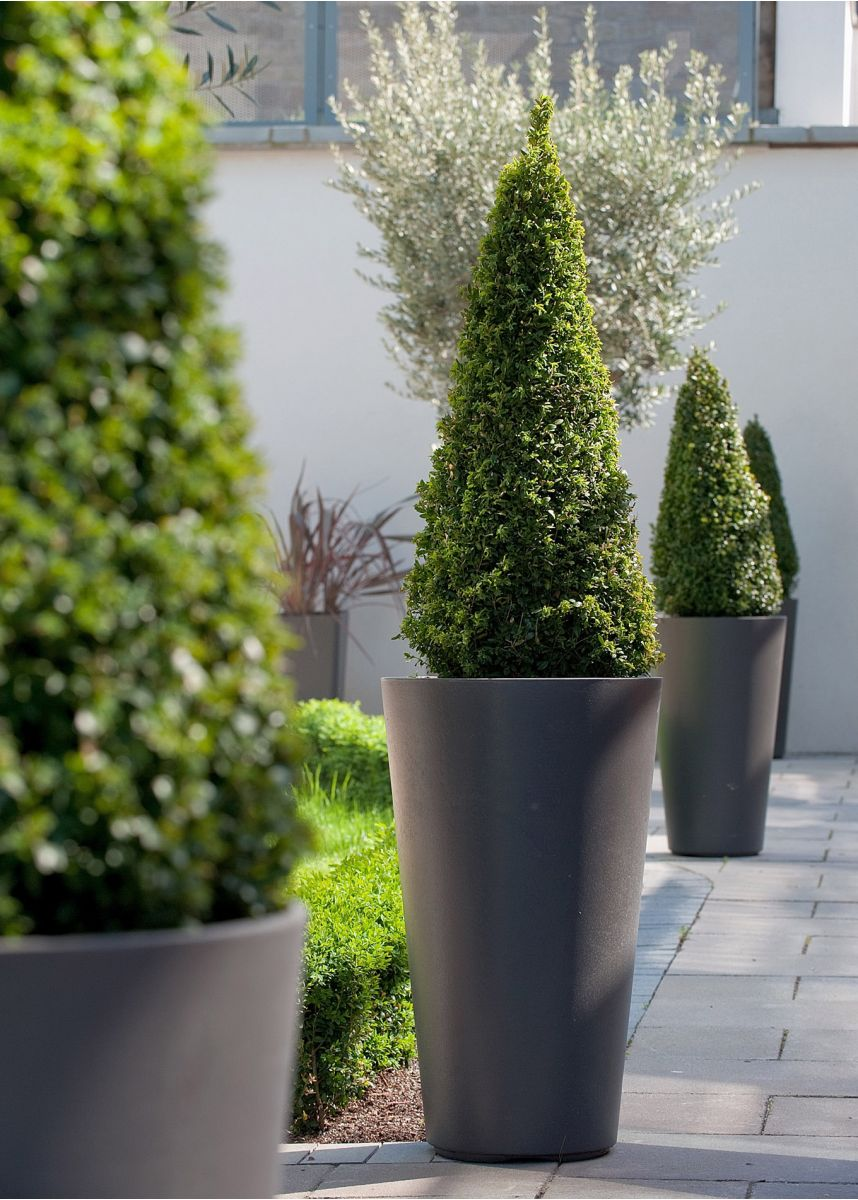 Anthracite tall round plant pots