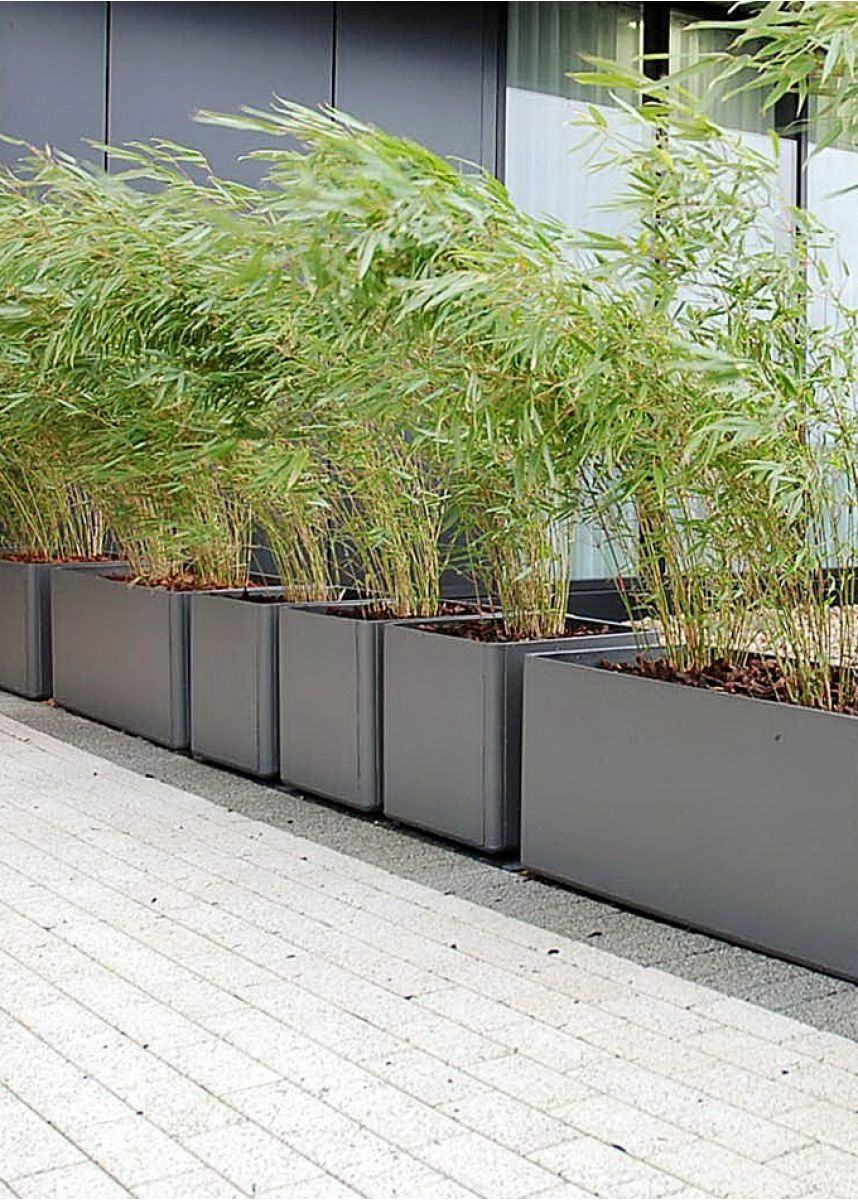 Square 60cm garden planters