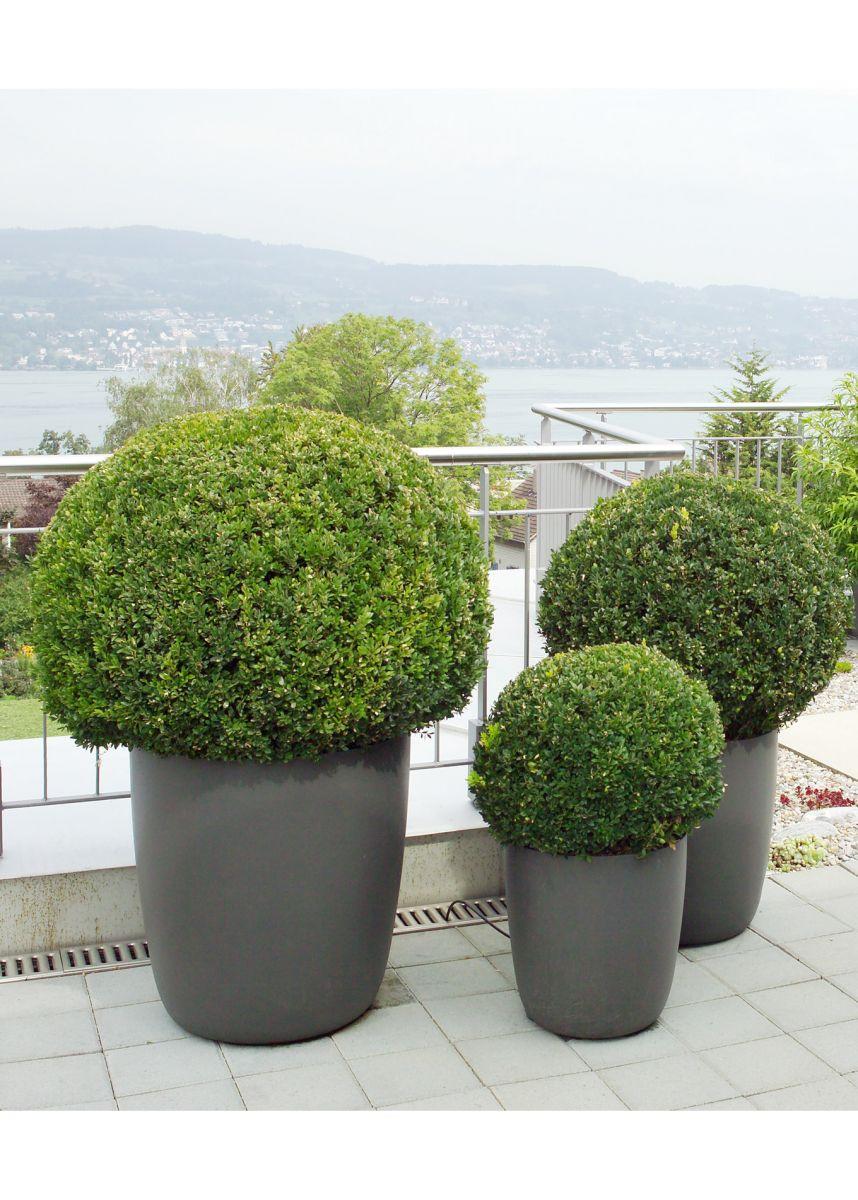 Lightweight tapered round plant pots