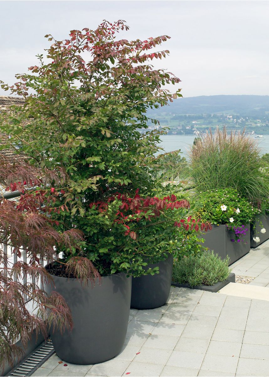 Strong durable large round planters