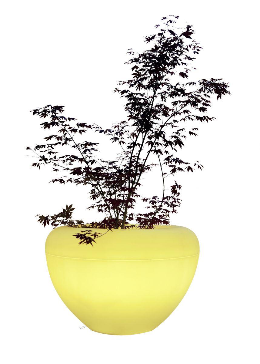 Scoop Moonlight with yellow light