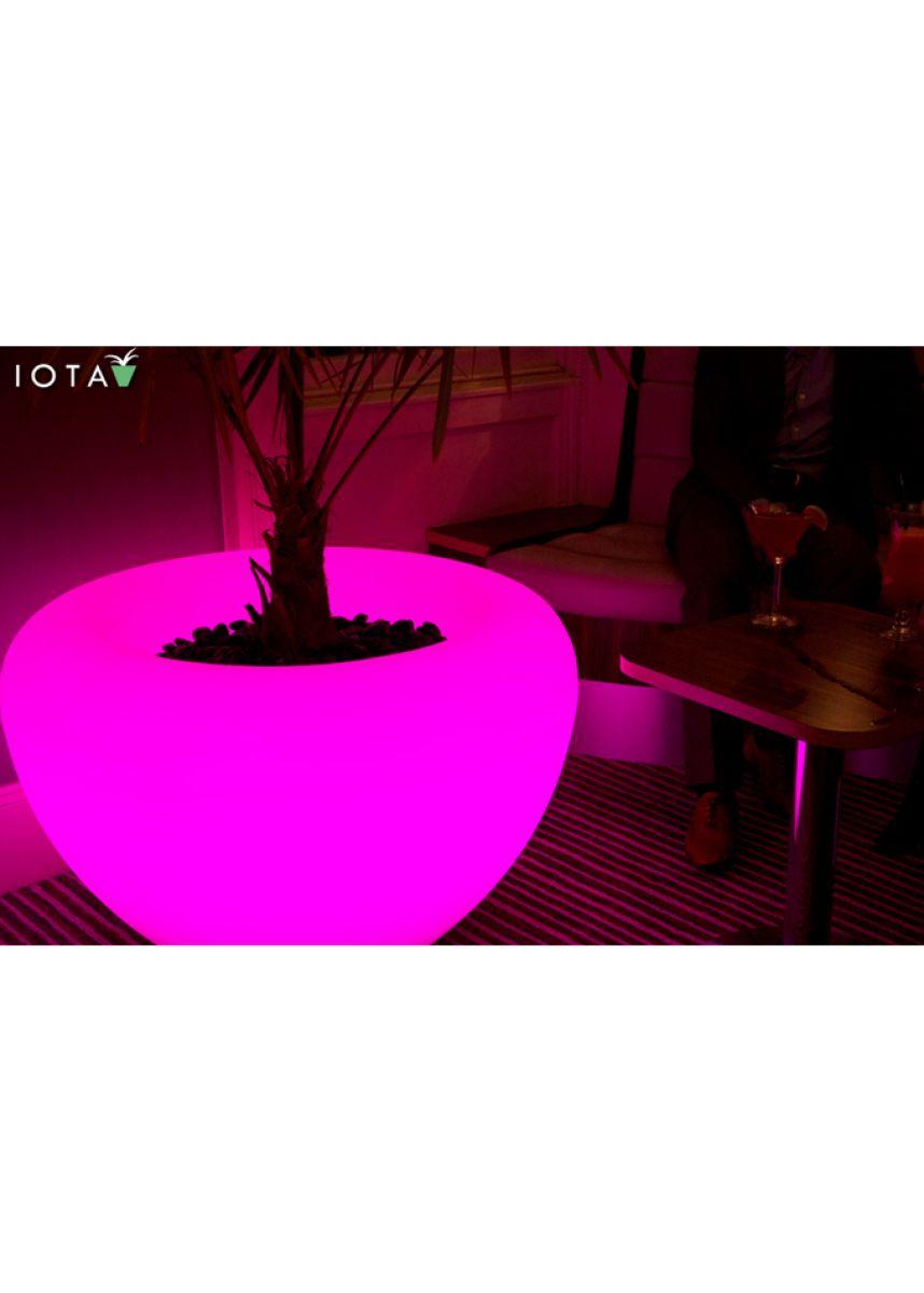 Moonlight Indoor and Outdoor planters