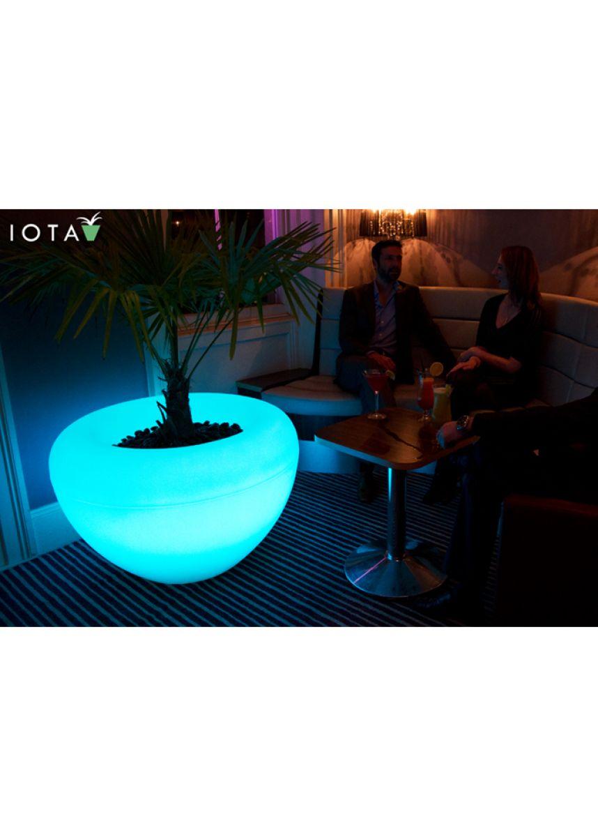 Moonlight Planter with Internal Light