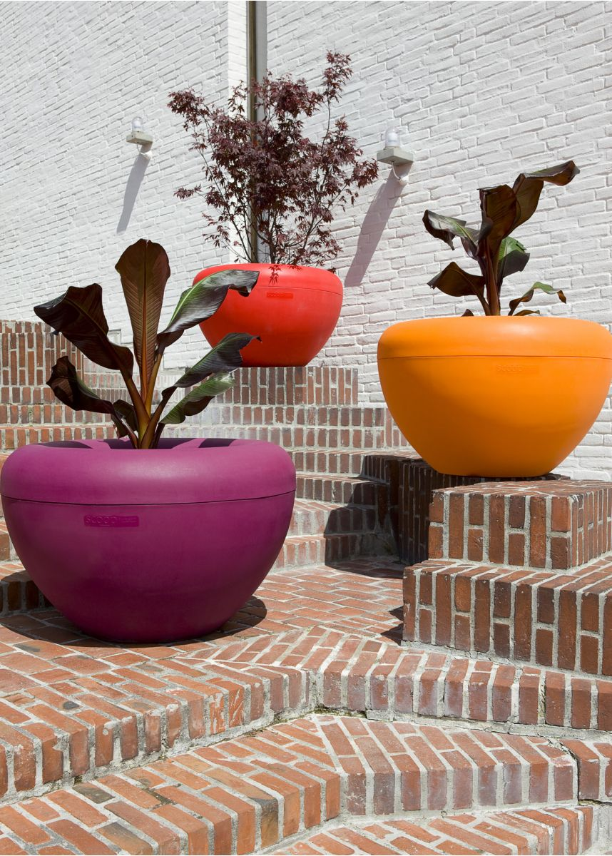 Purple Red and Orange tree planters