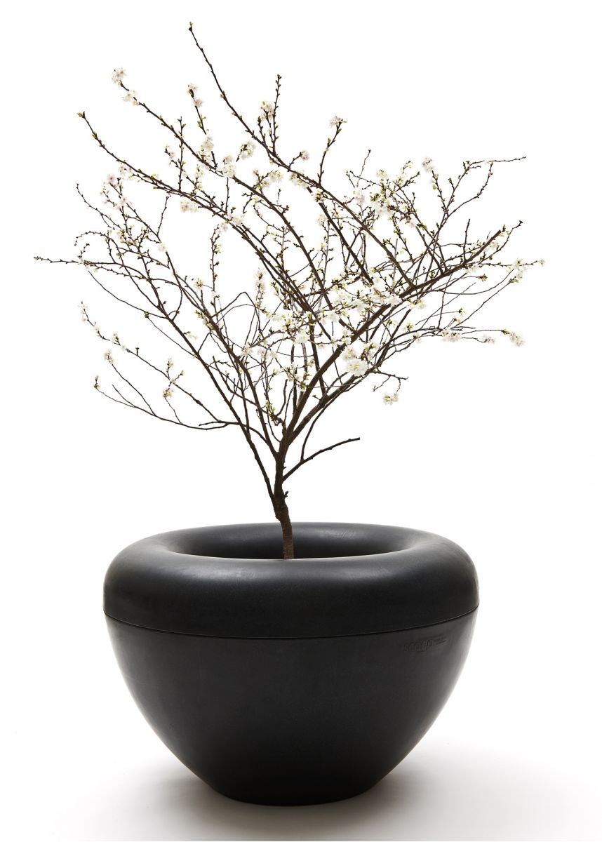 Black scoop tree planter