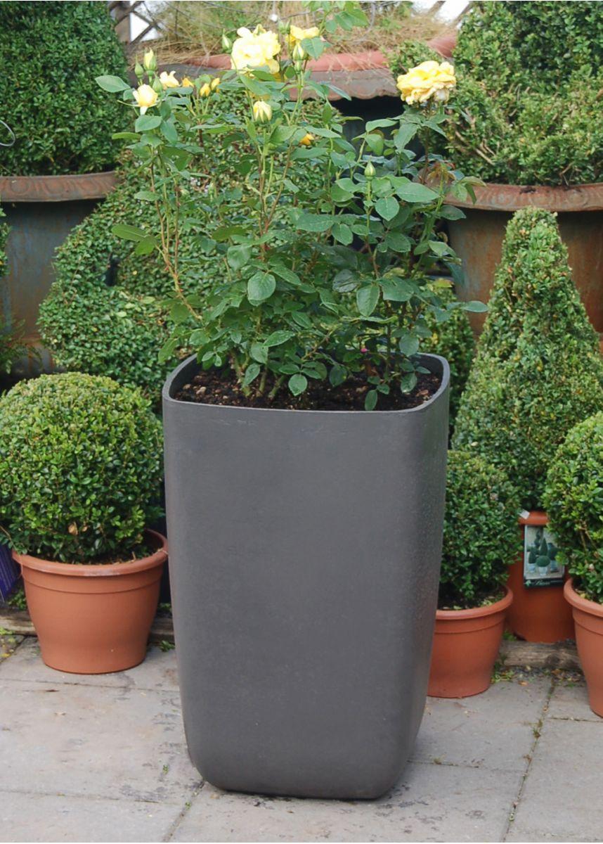 Samurai tall squared planters
