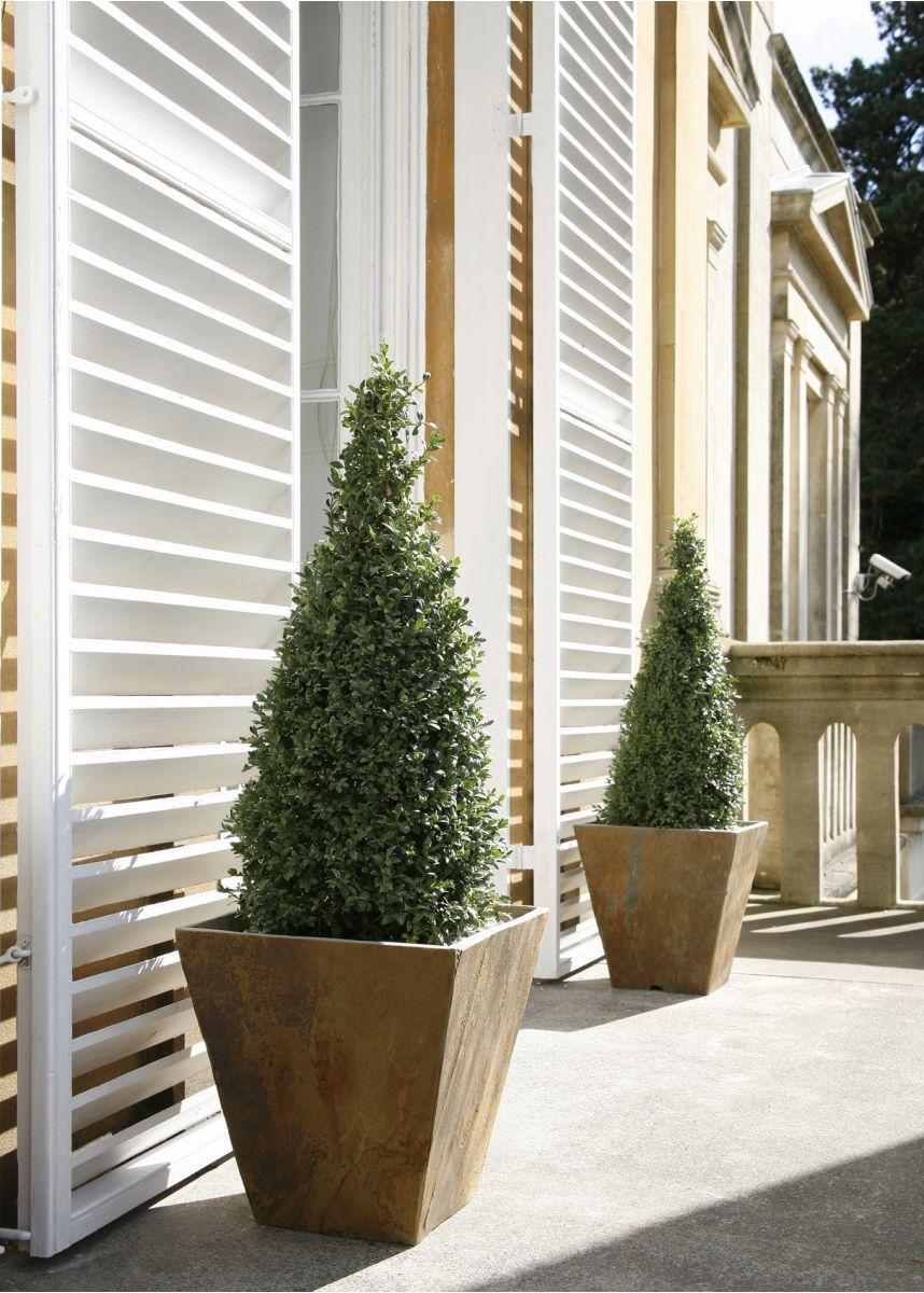 Small slate garden plant pots