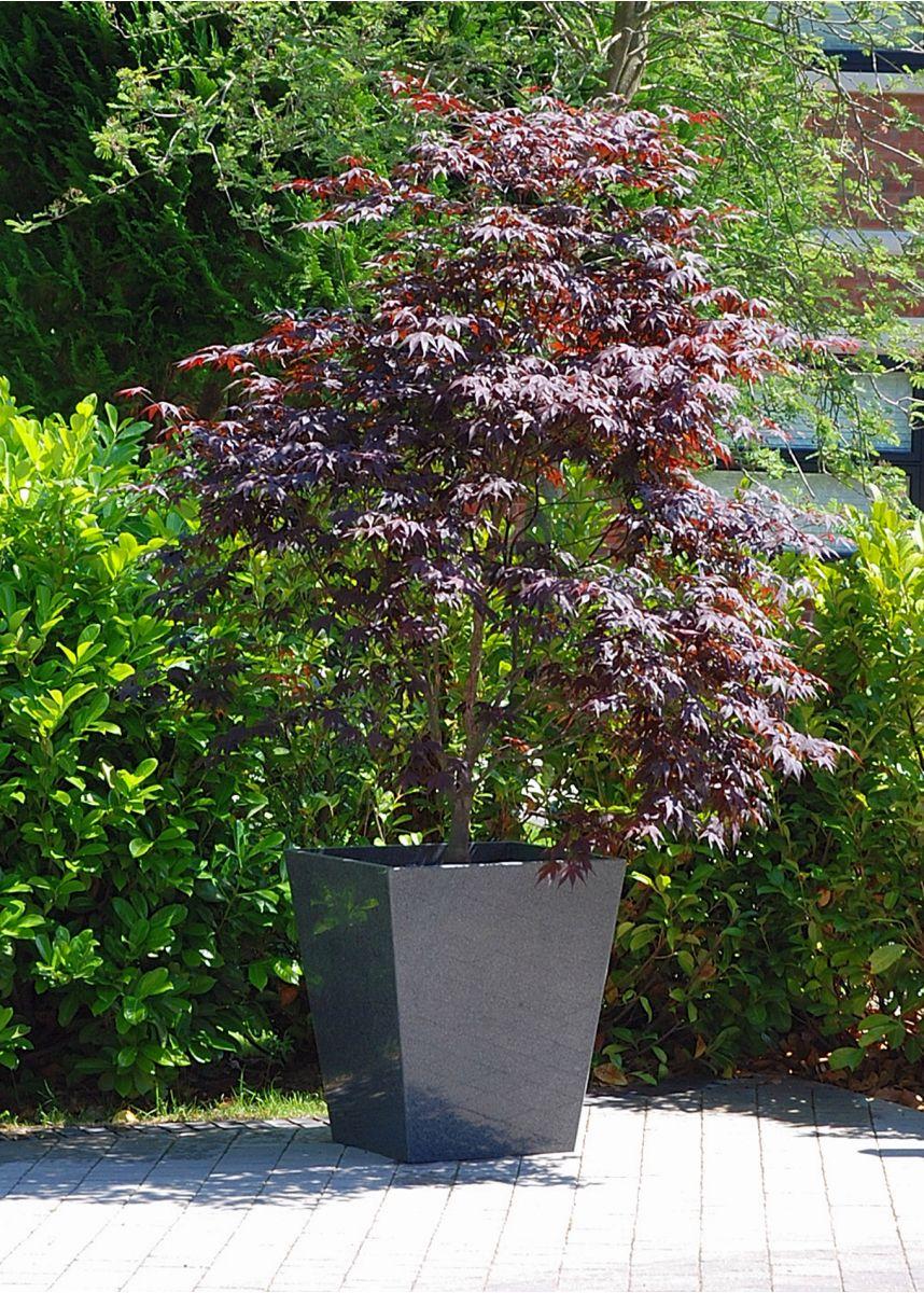 Natural stone granite tree planters