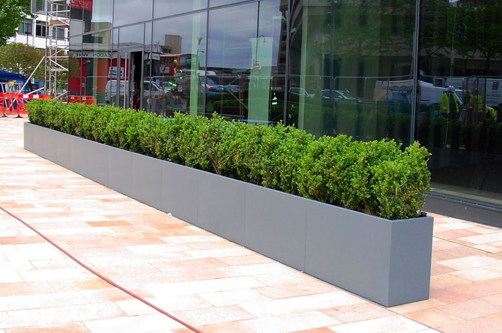 External, long trough planter for office exterior
