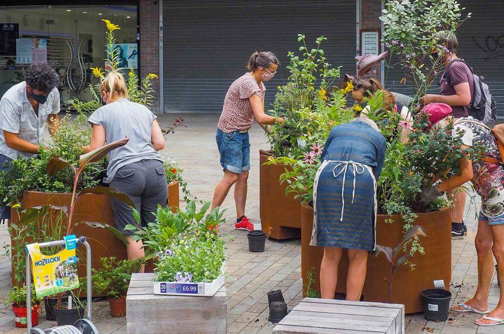 Community public planting project