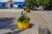 Custom coloured planter for public space