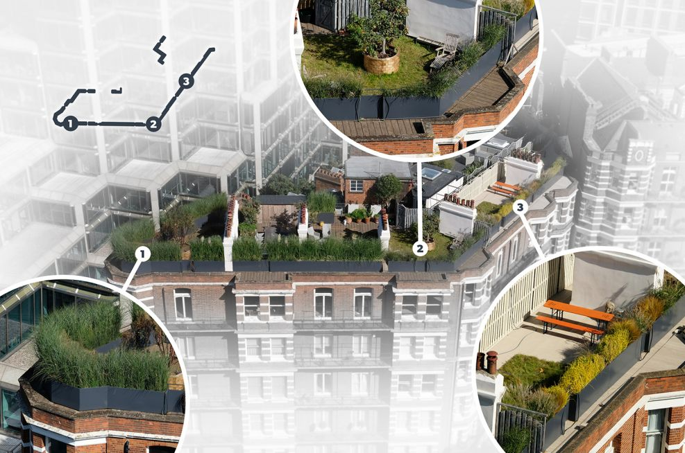 Steel perimeter planters for rooftop terrace