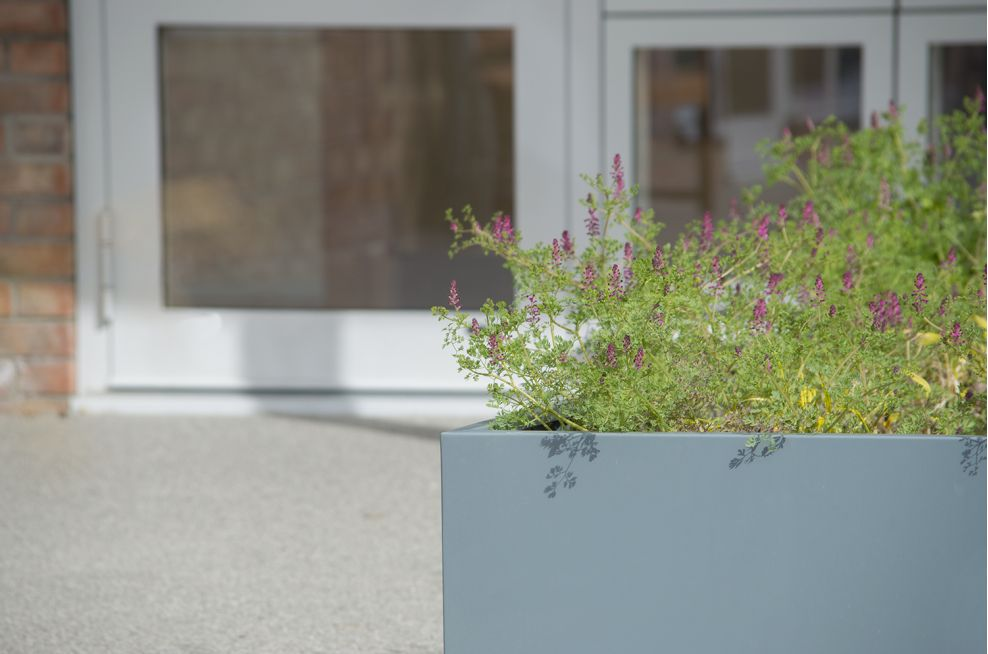 Large planters custom coloured to grey blue RAL 7031