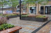 Large planters for public spaces