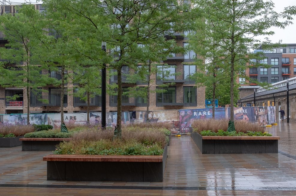 Large tree planters with bench seating