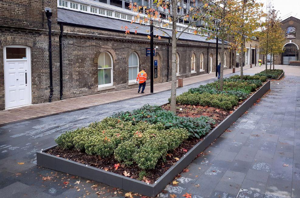 Low-level rectangular planters