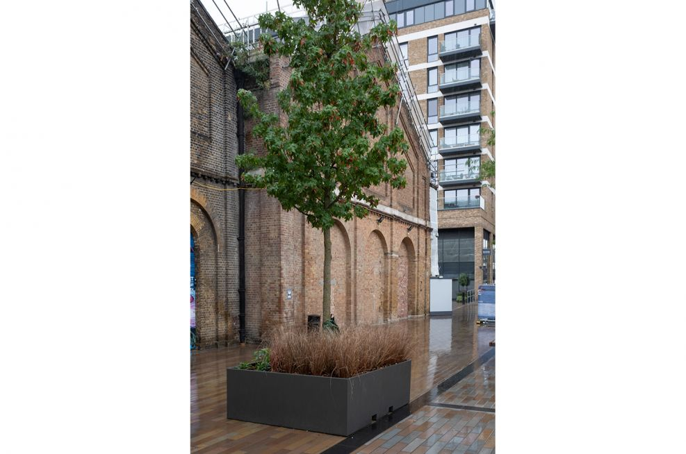 movable tree planters